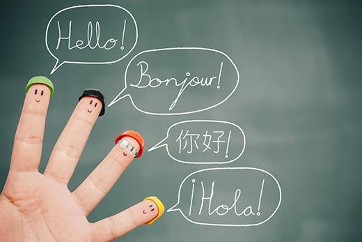 translationplugins